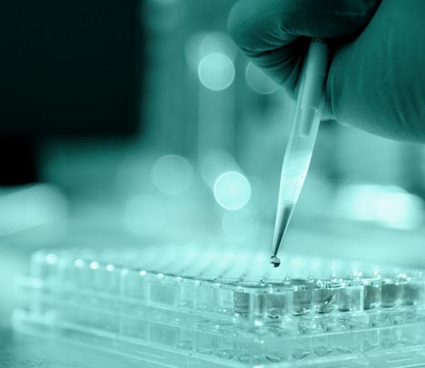 preparação de medicamentos em laboratório decomed
